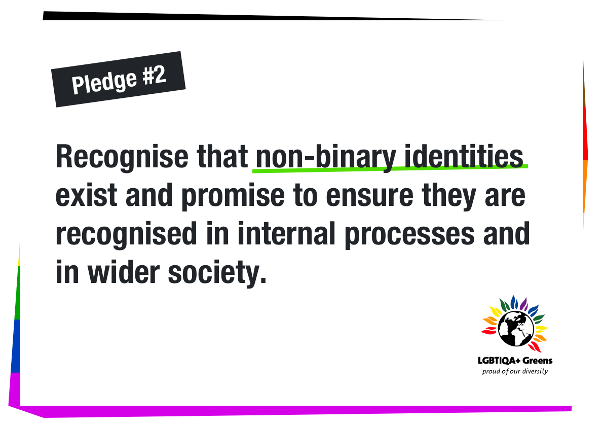 Recognise non binary identities are valid and promise to ensure they are recognised in internal processes and in wider society