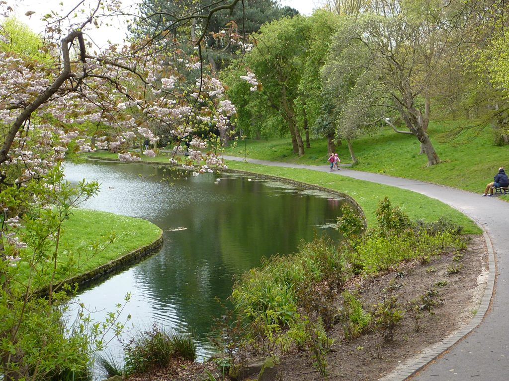 Picture of Sefton Park